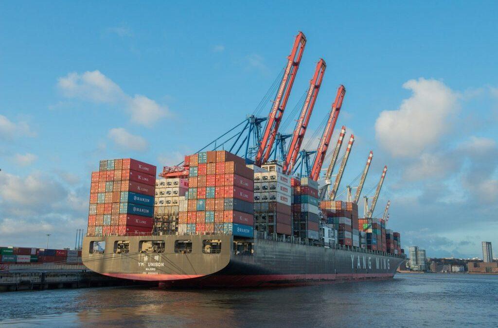 NITYA   Elastomeric Filament Yarn   Anti-Dumping Duty Review   Trade Law Insight   Issue 2